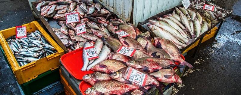 Продажа рыбы на рынке