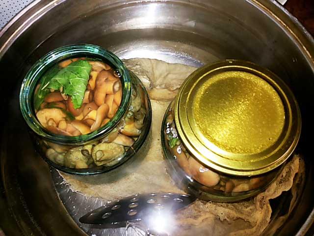 Что такое ботулизм в грибах