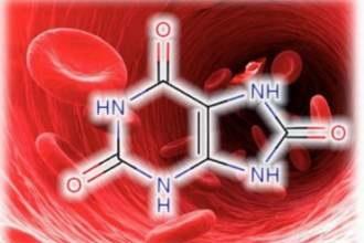 Как вывести мочевую кислоту из организма