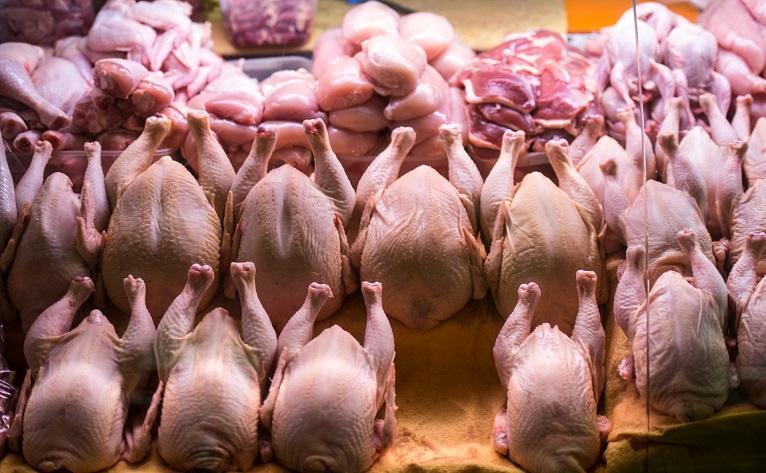 Хранение курицы